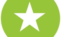 logo taalpunt film groene bol witte ster
